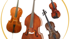 Orchestral Strings Instruments & Accessories