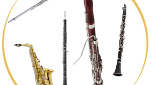 Woodwind Instruments & Accessories