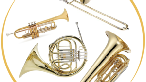 Brass Instruments & Accessories