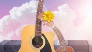 Guitars, Ukuleles & Accessories